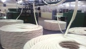 India's cotton yarn exports to rise