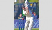 Williamson leads NZ fightback