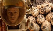 Scientists grow potato under Mars-like conditions in Peru