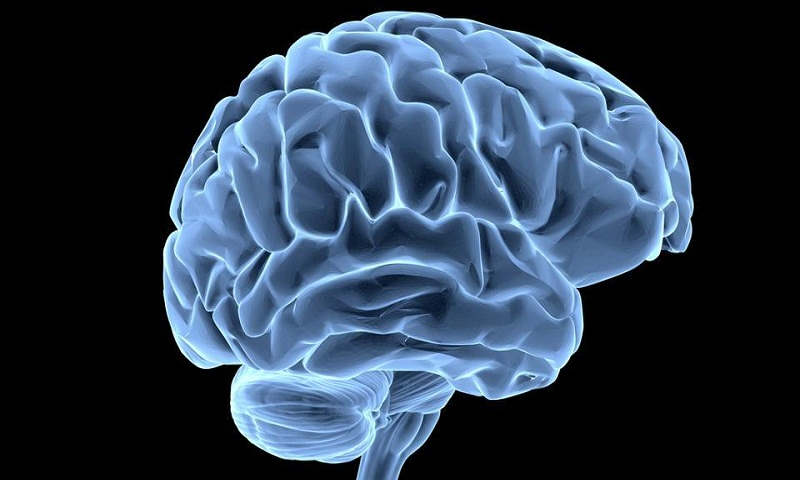 Some people's brains begin to age faster