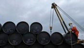 New power plants stuck in fuel import permission row