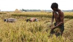 'Invent farmer-friendly techs for cost reduction in agriculture'