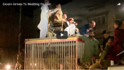 Pakistani groom tries to enter wedding riding a lion (Video)