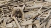 Woman's dramatic escape out of a massive mudslide in Peru (Video)