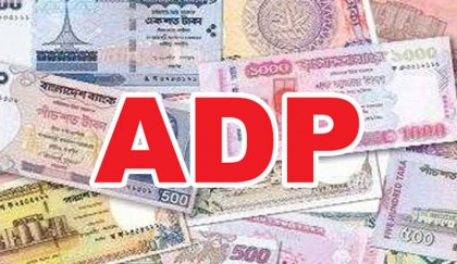 246 ADP projects saw no progress in FY16