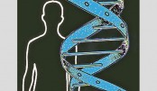 Most cancers caused by random DNA copying errors