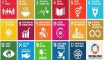 'Decentralised budgets needed for SDGs implementation'