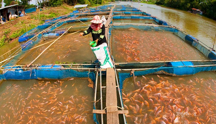 Use of modern fish farming technology stressed