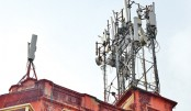Mobile Tower Radiation Slowly Poisoning Our Health