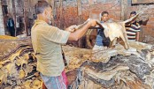 Tannery owners exonerated from Tk 30.85cr fine