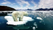 Next ten years critical for achieving climate change goals