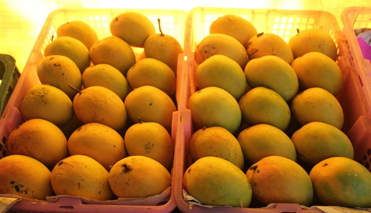 Government aims to step up mango exports with incentives to farmers