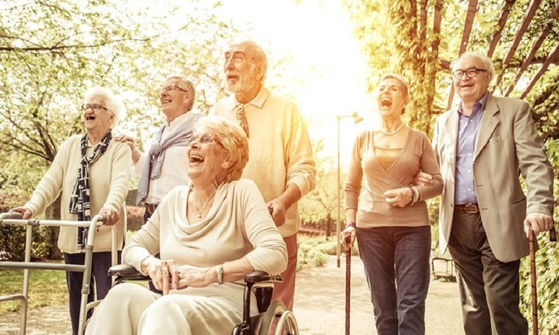 Green spaces, woods good for elderly
