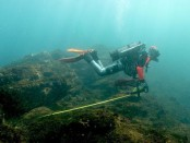 Japan volcanic island may hold key to coral survival