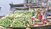 Watermelons dearer despite huge supply