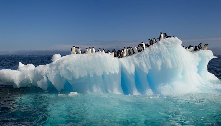 Antarctic meltwater lakes threaten sea levels: study