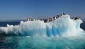 Antarctic meltwater lakes threaten sea levels: study