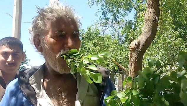 Pakistani man survives on leaves for 25 years