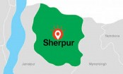 Farmer dies in Sherpur elephant attack