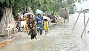 People in flood-affected haor areas cry for relief