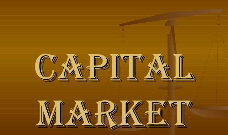thesis on capital market development