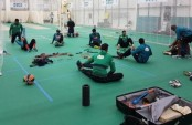 Tigers' practice on in full swing in Brighton