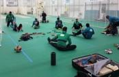 Tigers' practice on in full swing in Brighton