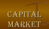 Capital markets need to be flourished for sustainable development