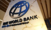 Reform port for getting more share in global trade, suggests World Bank