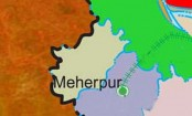 Housewife found dead in Meherpur