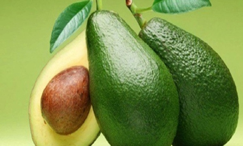 Want to lose weight? Start eating avocados