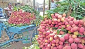 Litchi starts arriving in markets