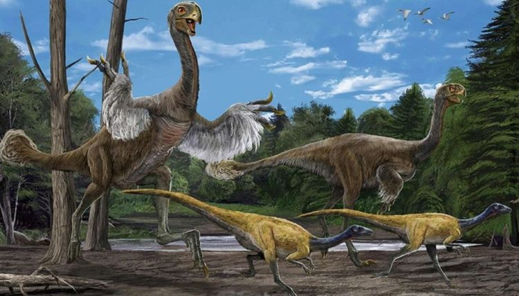Giant bird-like dinosaur species found in China: study