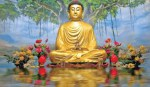 Buddha & His Universal Lessons
