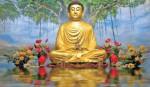 Buddha & His Universal Lessons