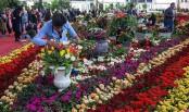 5-day International flower exhibition ends Friday in Iran