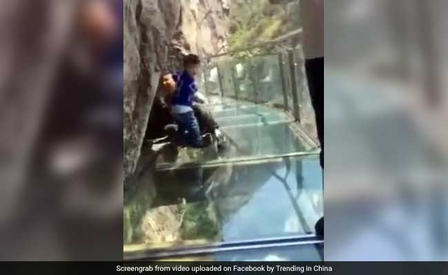 Brave toddler drags terrified dad across glass walkway (Video)