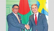 Nasrul seeks Swedish support for energy sector