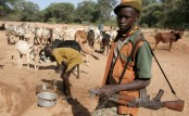 Herdsmen kill 20 farmers in western Nigerian mosque