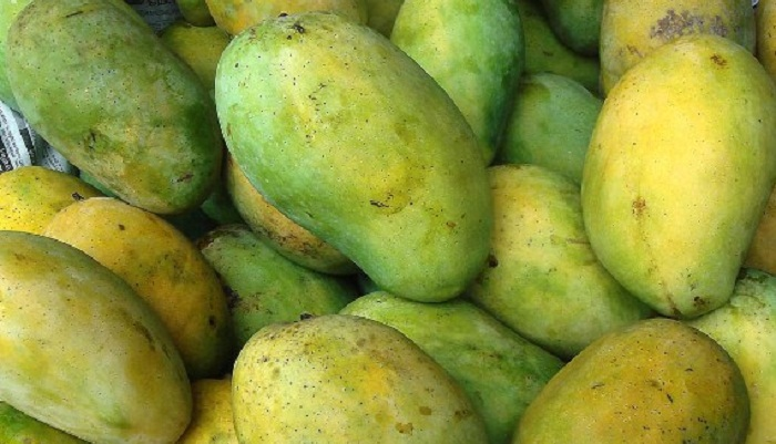 Satkhira mangoes being exported to Europe