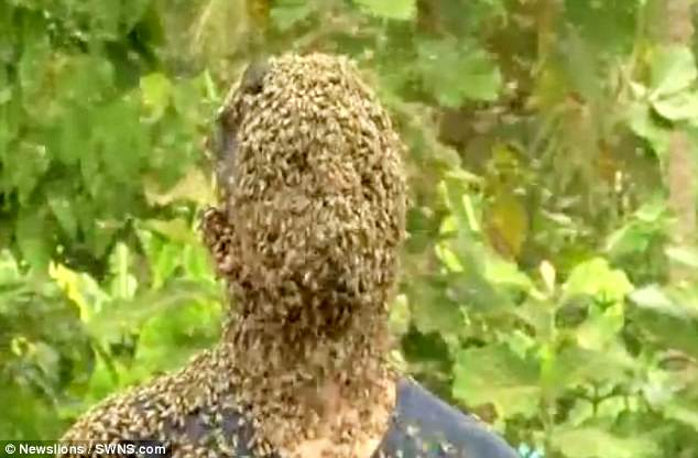 Indian man covers his face with 60,000 stinging bees ( Video)