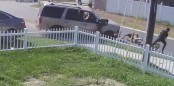 Teen miraculously walks away safe after out-of-control car rams into him (Video)