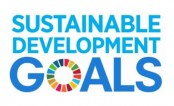 Experts for institution-based Zakat collection to achieve SDGs