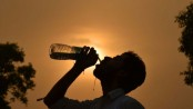 Hot spell puts life in peril