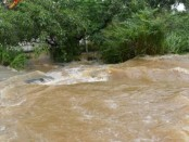 Floods, landslides kill 91 in Sri Lanka
