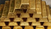 Smuggler held with gold bars in Satkhira