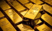 2.3kg gold seized in Benapole, 1 held