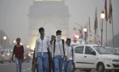 Exposure to diesel pollution may damage your heart