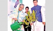 Country exists for Sundarbans: PM