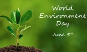 World Environment Day being observed